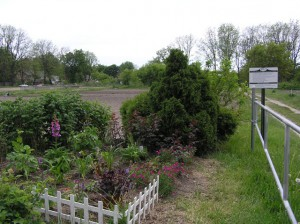 Hillcrest Community Garden